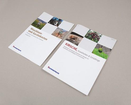 Verschiedene Beratungsring Folder
